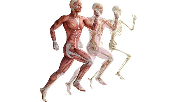 Post-Operative-Orthopaedic-Rehabilitation-620x350